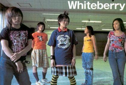 whiteberry3